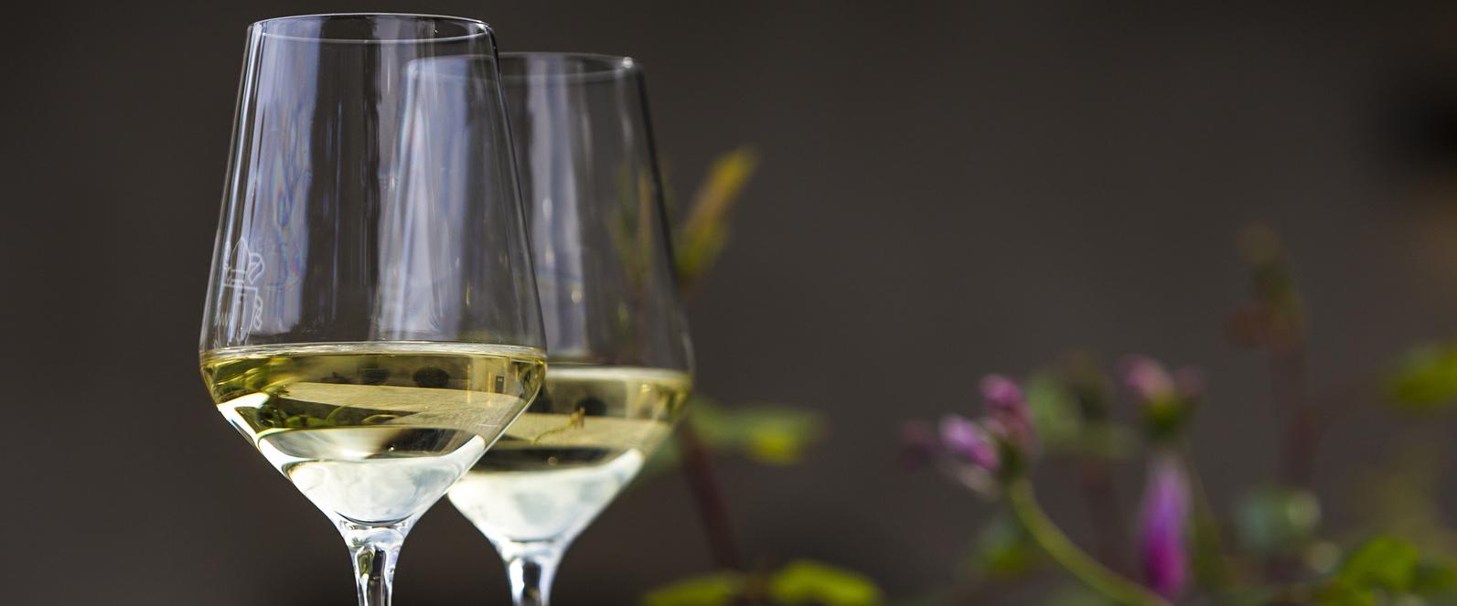 Savoir quel vin blanc vous aimez